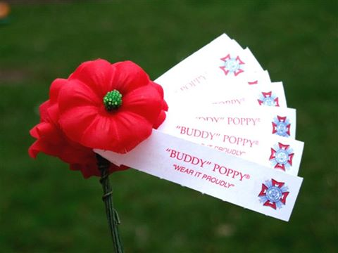 Buddy Poppy